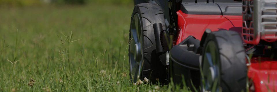 Трава Вашего газона будет всегда зеленее, чем у соседа